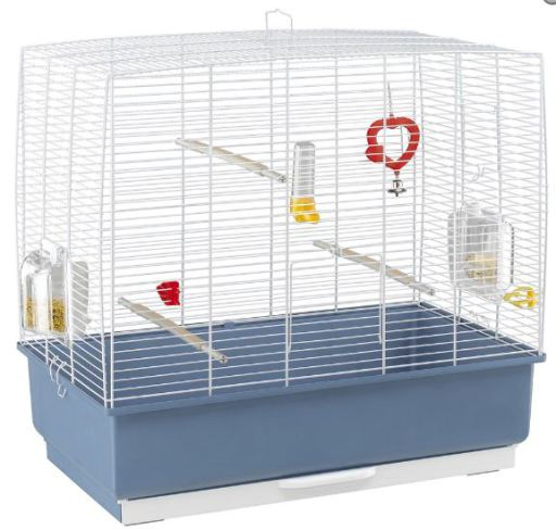Rekord Cage 4P (Blue/Green)